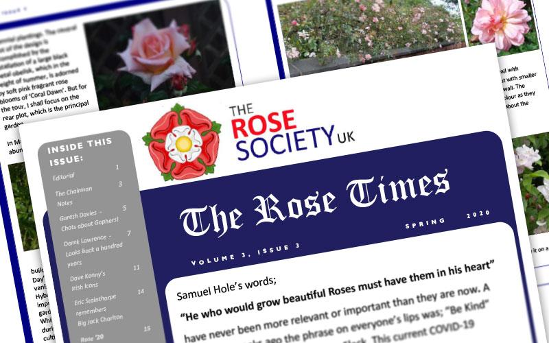 rose-times
